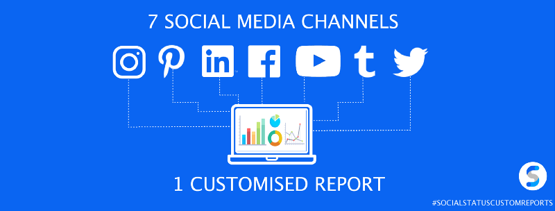 7 Social Media Channels, 1 Customised Report